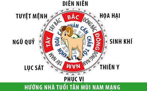 Nam sinh năm 1991 nên chọn hướng Bắc, Đông, Nam, Đông Nam