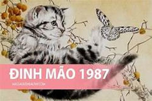 Tuổi Đinh Mão 1987